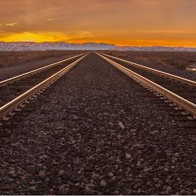 Sunset on the Tracks by Mike Lee - Landscapes Sunsets & Sunrises ( orange, railroad tracks, peaceful, into the sunset, railroad, sunset,  )