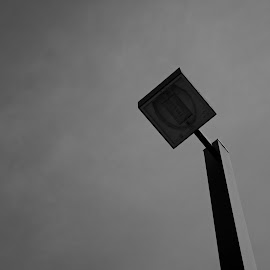 Looming by Susan Myers - City,  Street & Park  City Parks ( monochrome, streetlight, black and white, landscape )