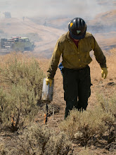 Photo: West Cinder Prescribed Burn, Twin Falls District BLM, Idaho, August 3, 2010, firefighter, drip torch, fire engines