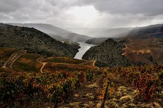 Photo: Uma abordagem muito pessoal ao Alto Douro vinhateiro