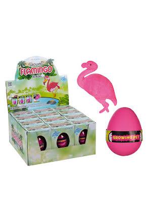 Växande flamingo i ägg