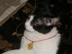 Photo: take one guess who put this necklace on Horus