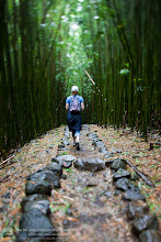 Photo: Here's a quick photo for you to get lost in. The bamboo forest of Haleakala National Park is a great place to escape. Even on the the brightest of days walking down this path is always dark, cool and wet. Enjoy...