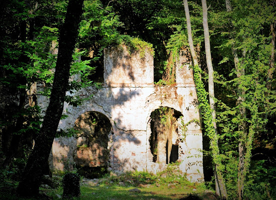 la casa nel bosco di AGATA