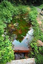 Photo: kolor wody ewidentnie... zdrojowy
