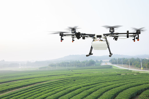 French winemakers add drones to the viticulture mix
