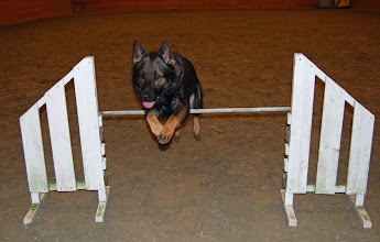Photo: Hopp!