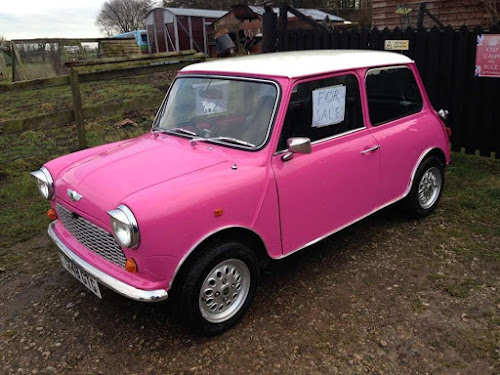 The Pink Mini for sale 1989 Classic Car | Krys Kolumbus Travel