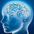 BrainPace