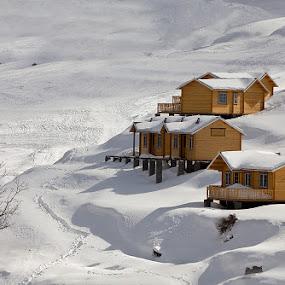 Snowscapes by Jasminder Oberoi - City,  Street & Park  Vistas ( auli, nature, huts, snow, snowscape, india, uttarakhand, landscape )