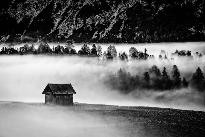 Tra la nebbia di Claudio Tenca