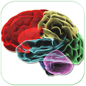 HUMAN BRAIN (PARTS-FUNCTIONS) icon