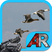 AR Birds Defense