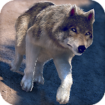 Online Wolf Games For Free Icon