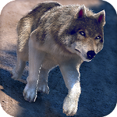 Online Wolf Games For Free