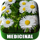 MEDICINAL PLANTS: Download for PC Windows 10/8/7