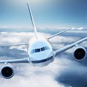Flight Sim Passenger Plane