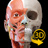 Muscle | Skeleton - 3D Atlas of Anatomy 1.8.2