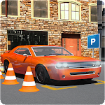 Car Driving School 3d Parking Icon