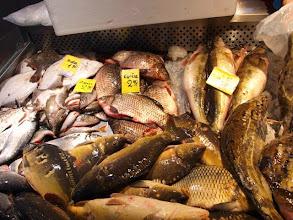 Photo: Все это-свежая рыба. Особенно радуют мое гастрономическое сердце налимы.