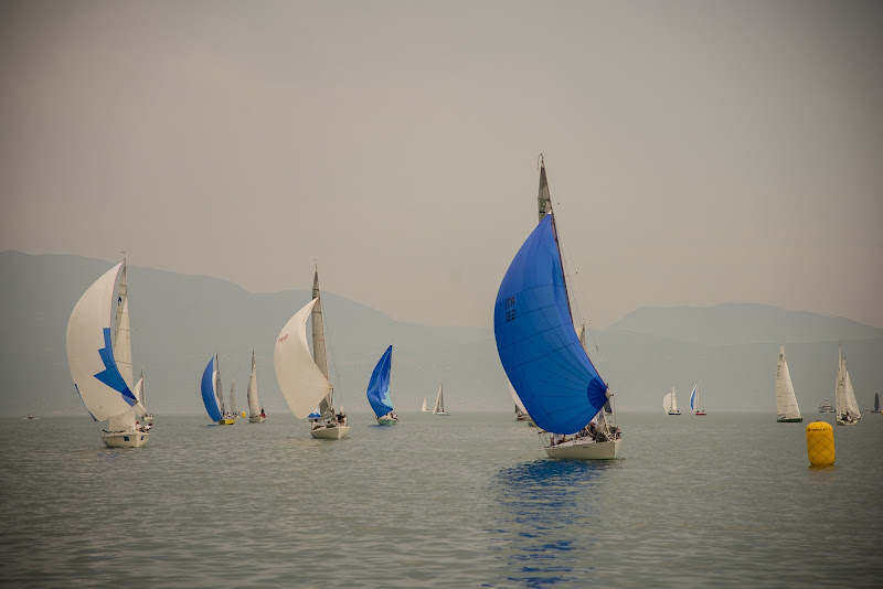 Sailing di Olaf