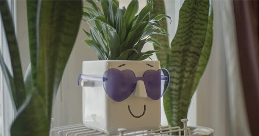 Face Plant Holder Just $6.33 at Target | Fun to Decorate & Personalize
