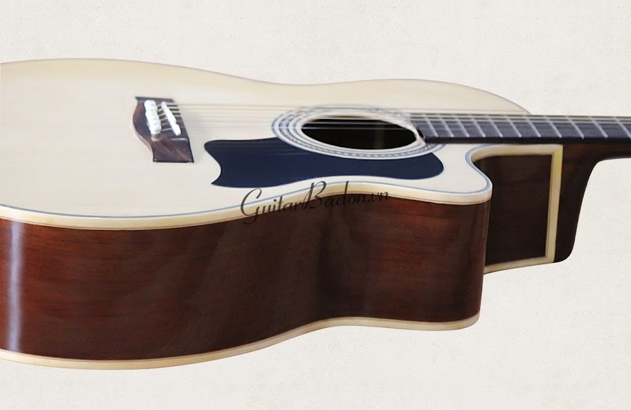 Acoustic guitar DJ150