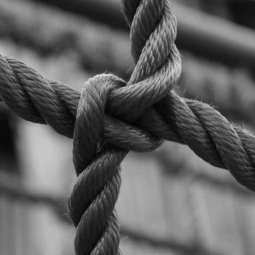 Lwp 繩結繩 個人化 LOGO-玩APPs