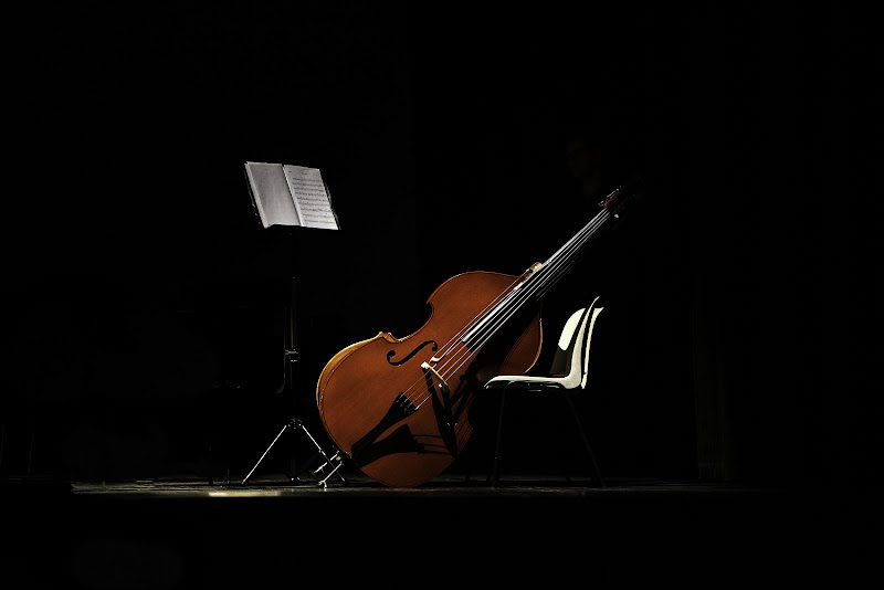 Il violoncello di Fiore Doncovio