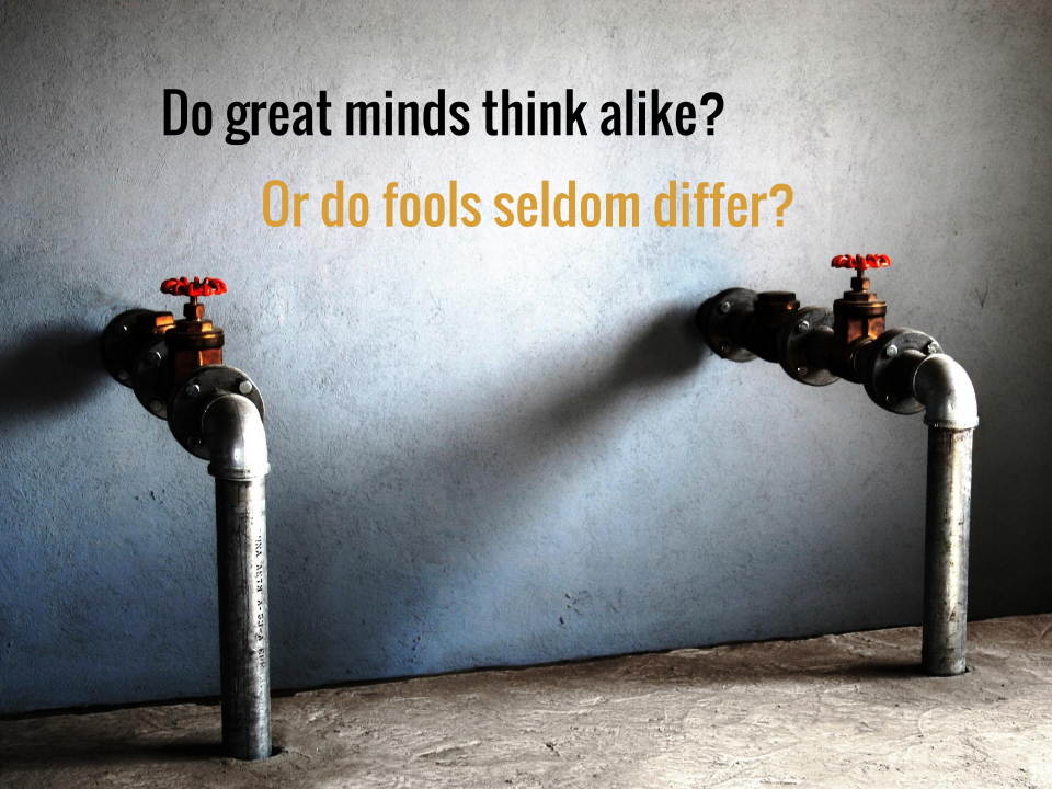 Do great minds think alike or do fools seldom differ?