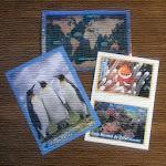 Colecciones de Cromos Icon