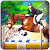 Real Horse Racing:Derby Horse Racing Game 20  file APK for Gaming PC/PS3/PS4 Smart TV