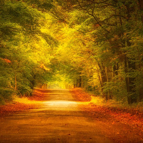country road by Mike N Connie Holmes - Digital Art Places (  )