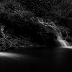 Cascades by Matthew Wood - Landscapes Waterscapes ( stream, black and white, waterscape, cascade, creek, waterfall, rocks, rainforest )