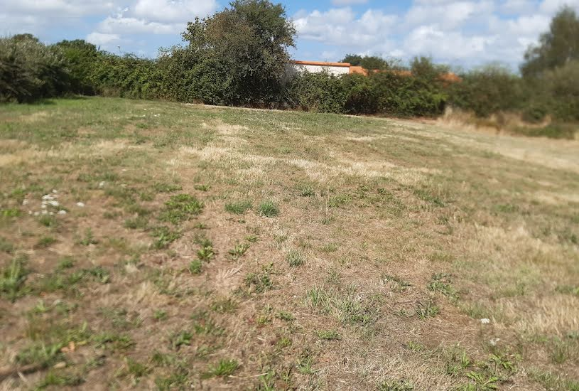 Vente Terrain à bâtir - 412m² à Montjean-sur-Loire (49570)