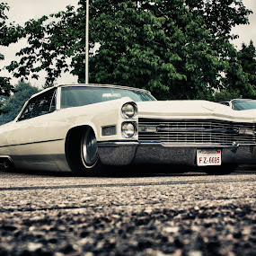by Tomi Monto - Transportation Automobiles ( cadillac, slammed, low, bagged )
