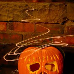 Pumpkin in a hat by Steve Weston - Public Holidays Halloween ( holiday, orange, pumpkin, halloween )