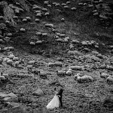 Fotograful de nuntă Florin Belega (belega). Fotografia din 03.09.2019