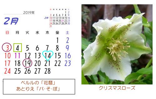 2月の花暦