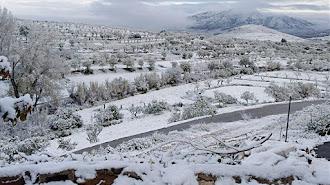 Vélez-Rubio ha sido uno de los pueblos que amanecieron cubiertos por una fina capa de nieve.