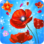 Blooming Blossom Star Icon