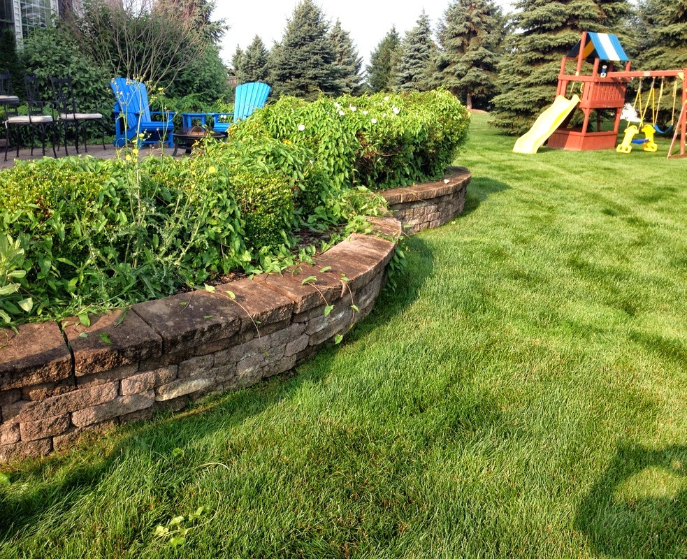 Photo: Retaining Walls Construction & Repair Sevices in Rochester, Monroe County NY  Retaining Walls Construction & Repair Sevices in Rochester, Monroe County NY by Acorn Ponds & Waterfalls.   Check out our website www.acornponds.com and give us a call 585.442.6373.  The installation requirements for #RetainingWalls in Rochester, Monroe County, New York will vary depending on what type wall block, how high you are going, what is going to be held back or retained and what the area that is retained is going to be used for. It is very important to build retaining walls by recommended guidelines of the manufacturers.  Visit our website info on Retaining Wall Repair & Construction here: http://www.acornponds.com/retaining-walls.html - in Rochester NY  Learn more about Retaining Wall Repair, Renovation & Construction in the Pittsford, Brighton, Fairport, Penfield, Irondequoit and more in The Greater Rochester New York (NY) Area: https://www.facebook.com/notes/acorn-ponds-waterfalls/retaining-walls-repairsbrick-wall-installation-renovation-rochester-monroe-count/755282901175501  Find us on Houzz here: www.houzz.com/pro/acornlandscapedesign/acorn-landscaping-and-ponds-llc  Click here for a free Magazine all about Ponds and Water Features: http://flip.it/gsrNN   Sign up for your personal  design consultation here: www.acornponds.com/contact-us.html   Acorn Ponds & Waterfalls   585.442.6373 www.acornponds.com