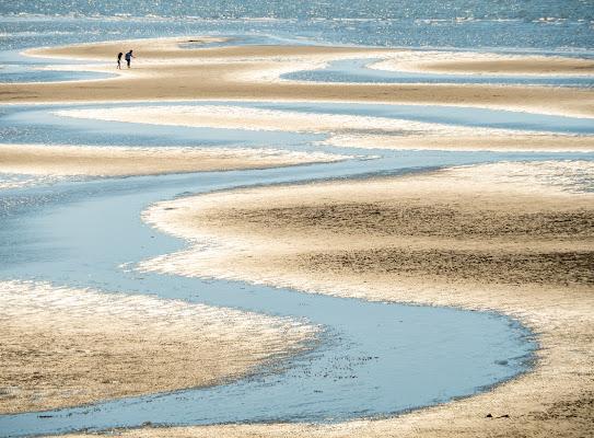 Bassa marea di Canguro