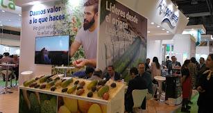 Stand de Grupo Agroponiente en Fruit Attraction.