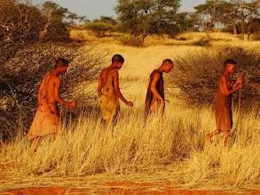 Photo: Désert du Kalahari, Bushmen en Namibie
