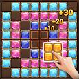 Block Puzzle: Jewels Jungle Gems Treasure icon