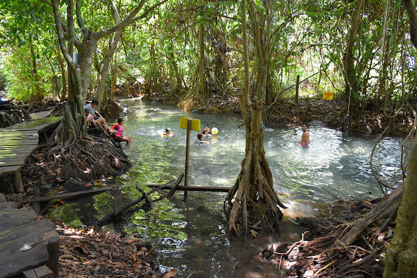 Swim in the freshwater stream of Long Klong Sra Kaew