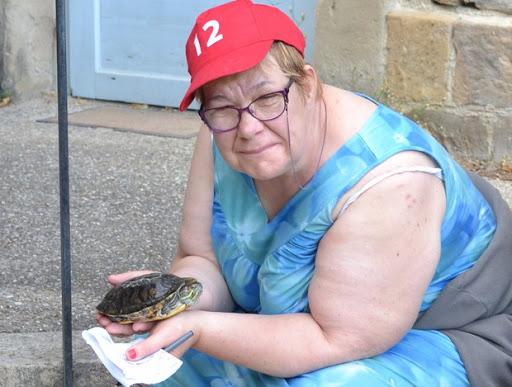 La tortue amie de l'Arche de la Vallée