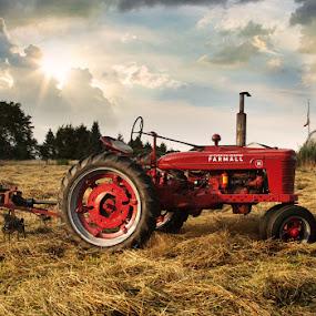 Farmall H by April Brown - Transportation Other ( farm, farmall, tractor, farmlife )