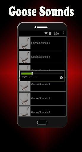玩音樂App|鵝聲音免費|APP試玩